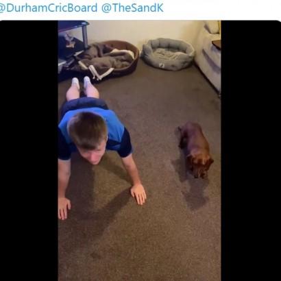 【海外発!Breaking News】飼い主の4倍速で腕立て伏せをするダックスフントが癒しに(英)<動画あり>