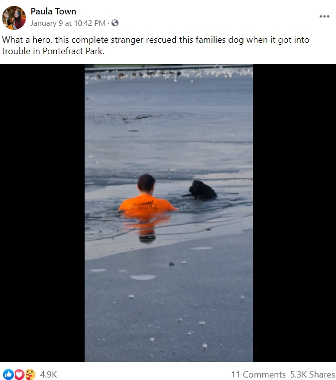 凍った湖で溺れる犬を救出する男性(画像は『Paula Town 2021年1月9日付Facebook「What a hero, this complete stranger rescued this families dog when it got into trouble in Pontefract Park.」』のスクリーンショット)