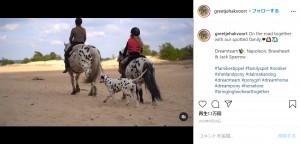 グリーティシュさん、ジョリーちゃんと共に出掛ける仲良しトリオ(画像は『Greetje Arends-Hakvoort 2020年9月28日付Instagram「On the road together with our spotted family」』のスクリーンショット)