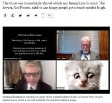 【海外発!Breaking News】過去には連続殺人犯の嘘を暴いた敏腕弁護士、Zoomでの裁判に子猫の姿で登場「もうこのまま続けてください」(米)<動画あり>