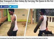 【海外発!Breaking News】「なぜ刺されない?」ハチの大群を腕にまとい歩く男 秘訣は拳の中の女王蜂にあり(ドミニカ共和国)<動画あり>