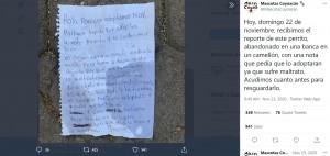 子供が書いた手紙(画像は『Mascotas Coyoacán 2020年11月23日付Twitter「Hoy, domingo 22 de noviembre」』のスクリーンショット)
