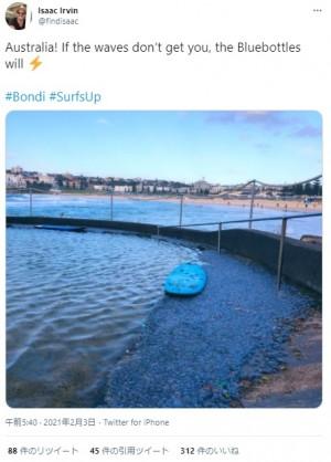 【海外発!Breaking News】美しいビーチ写真に潜む大量の電気クラゲ 「こんな数は見たことがない」(豪)