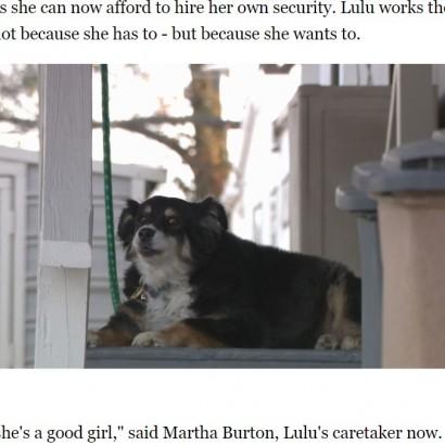 【海外発!Breaking News】5億円超の遺産を愛犬に遺した飼い主 世話を託された女性は「使い切れるように頑張ってみる」(米)