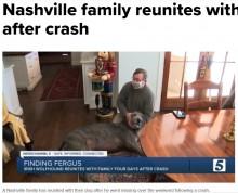 【海外発!Breaking News】事故に遭い行方不明だった犬、飼い主との再会で鳴いて喜ぶ姿に涙(米)<動画あり>