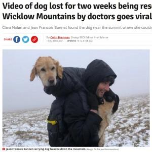 【海外発!Breaking News】冬の山で2週間迷子だった大型犬、登山客が見つけ担いで下山(アイルランド)<動画あり>