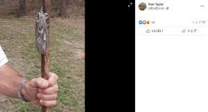 男性の拳とほぼ同じという驚きのサイズ(画像は『Pam Taylor 2021年2月24日付Facebook』のスクリーンショット)
