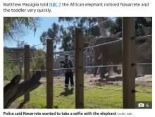 動物園で2歳娘を連れて柵を乗り越えた父親にゾウが猛突進(米)<動画あり>
