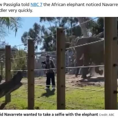 【海外発!Breaking News】動物園で2歳娘を連れて柵を乗り越えた父親にゾウが猛突進(米)<動画あり>