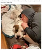 家の中に入ることを躊躇する保護犬 玄関先で困惑する姿に涙(米)<動画あり>