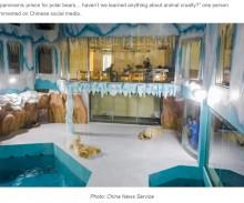 【海外発!Breaking News】ホッキョクグマを見世物にするホテルがオープンで物議「刑務所よりひどい」「病んでしまう」(中国)<動画あり>