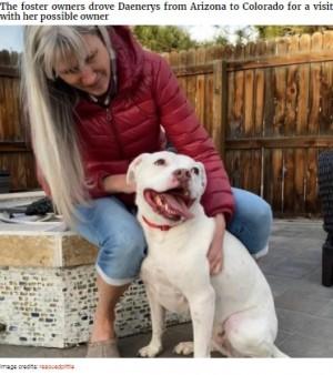 【海外発!Breaking News】アパートに置き去りにされた餓死寸前の犬、見事な変身を遂げる(米)<動画あり>
