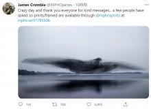 ムクドリが群れを形成し「別次元の巨大な鳥」に(アイルランド)<動画あり>