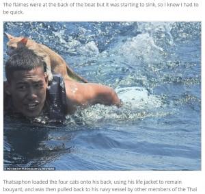 【海外発!Breaking News】沈む船から4匹の猫を救出 肩に乗せて海を泳いだ海兵隊員に称賛の声(タイ)