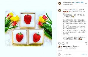 神田うのの夫が購入した高級イチゴ(画像は『Uno Kanda 2021年3月13日付Instagram「『こんな凄い苺買ってみたよ』とパパ(主人)」』のスクリーンショット)