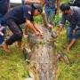 【海外発!Breaking News】6メートルのワニに丸呑みにされた8歳少年、腹から遺体で発見(インドネシア)<動画あり>