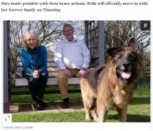 重石に繋がれ川に捨てられた犬、保護され新しい家族の元へ 許されざる元飼い主ら有罪に(英)<動画あり>