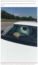 【海外発!Breaking News】高速道路を走行中の車にカメが直撃、助手席の女性が頭に怪我(米)