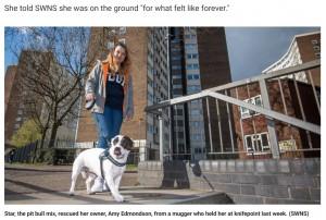 【海外発!Breaking News】ナイフを持った男に脅された女性、絶体絶命の危機に愛犬が勇敢に立ち向かう(英)