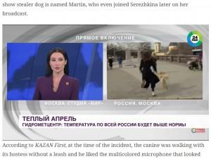 冷静に対応したスタジオのエリーナさん(画像は『The Indian Express 2021年4月4日付「Watch: Dog steals reporter's mic during live broadcast, melts viewers' hearts」』のスクリーンショット)