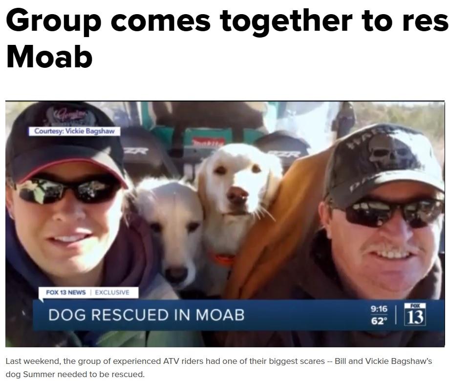 """アウトドアに出掛けるのが大好きなゴールデン・レトリバーの""""サマー""""と""""ウィンター""""(画像は『fox13now.com 2021年3月29日付「Group comes together to rescue dog in Moab」』のスクリーンショット)"""