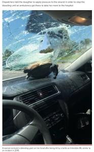 フロントガラスが粉々になるもカメは無事(画像は『New York Post 2021年4月22日付「Woman gashed in the head after turtle crashes through windshield」(Facebook)』のスクリーンショット)