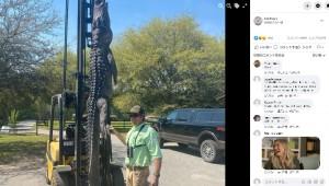 【海外発!Breaking News】3メートル超の巨大ワニを仕留めたハンター 24年間行方不明だった犬の悲しい結末が明らかに(米)