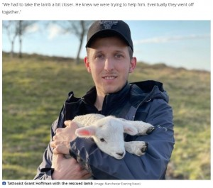 子羊を助けるためすぐさま行動に移したグラントさん(画像は『Daily Post 2021年4月15日付「Tattooists show softer side with 'Disney-style' rescue of lamb from tree in North Wales」(Image: Manchester Evening News)』のスクリーンショット)