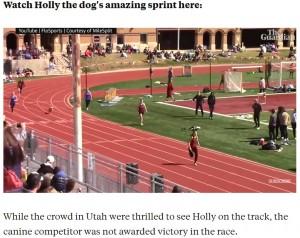 【海外発!Breaking News】800mリレーに犬が乱入 次々と選手を追い抜き1位でゴール(米)<動画あり>