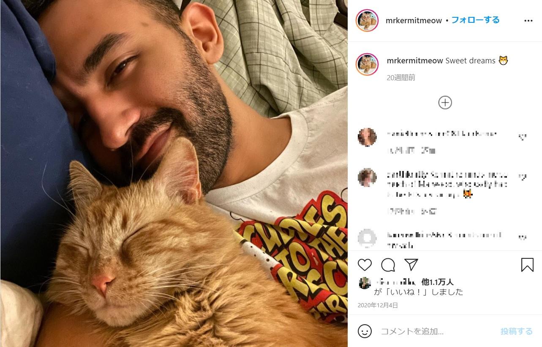 「つらい時期を救ってくれた」というネコと寄り添う男性(画像は『Javie & Mr. Kermit 2020年12月4日付Instagram「Sweet dreams」』のスクリーンショット)