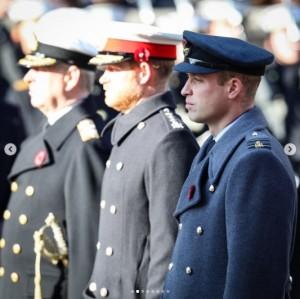 【イタすぎるセレブ達】ウィリアム王子とヘンリー王子、葬儀前では従兄を挟んで歩くことに「現実的な決断」