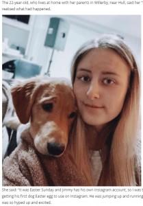 ジミー専用のInstagramに投稿する写真を撮影している中での出来事だった(画像は『WalesOnline 2021年4月15日付「Emergency surgery after puppy eats Apple AirPods」』のスクリーンショット)