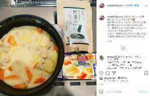 菊池梨沙お手製のクリームシチュー(画像は『菊池梨沙 2021年4月1日付Instagram「本日のシチューも順調になくなっております」』のスクリーンショット)