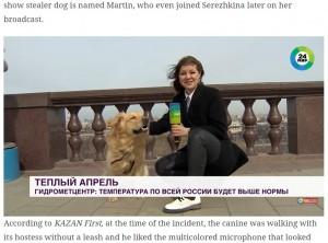 【海外発!Breaking News】お天気リポーターのマイクを奪ったいたずら犬の映像が世界中に拡散(露)<動画あり>
