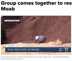 大人しく崖下で救助を待っていたサマー(画像は『fox13now.com 2021年3月29日付「Group comes together to rescue dog in Moab」』のスクリーンショット)