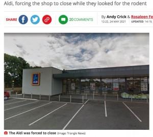 【海外発!Breaking News】「猫のせいで」買い物客の女性、支払い時にバッグからネズミが飛び出し店が一時閉店(英)