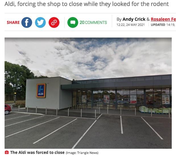 ネズミのせいでスーパーが一時閉店する騒ぎに(画像は『Mirror 2021年5月24日付「Woman 'dies of shame' after mouse escapes from her handbag while shopping at Aldi」(Image: Triangle News)』のスクリーンショット)