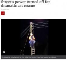 【海外発!Breaking News】高さ10メートルの電柱の上で助けを求める猫 救出のため地域は一時停電に(英)<動画あり>
