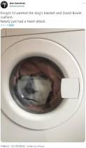【海外発!Breaking News】洗濯機の中から覗く男? 驚愕した男性「心臓発作を起こすところだった」(英)