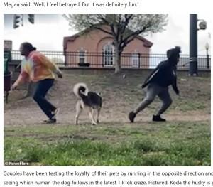 【海外発!Breaking News】愛犬の信頼度を測るチャレンジが話題に 落ちている枝に負ける飼い主も(米)<動画あり>