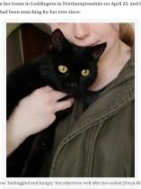 【海外発!Breaking News】 井戸の底から鳴き声が 1週間以上も行方不明だった猫が見つかる(英)