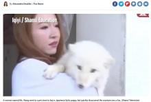 """【海外発!Breaking News】仔犬を飼育していたはずが""""別の動物""""と判明 2年後にクマだと気づいたケースも"""