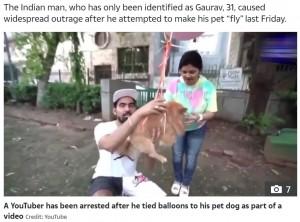 たくさんの風船が括りつけられたダラー(画像は『The Sun 2021年5月27日付「RUFF RIDE Indian YouTuber arrested for tying balloons to pet dog to make it fly for cruel video stunt」(Credit: YouTube)』のスクリーンショット)