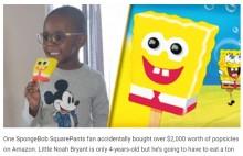 【海外発!Breaking News】アマゾンで918本のアイスキャンディを注文してしまった4歳児 請求金額は28万円に(米)