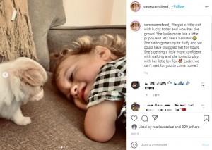 【海外発!Breaking News】前腕欠損の2歳児、同じ病気の子犬と出会う 「人と違っていい」と母親(カナダ)<動画あり>
