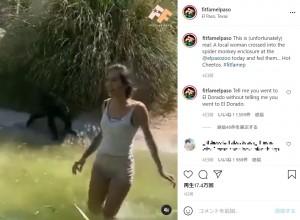 クモザルとの勝手な触れ合いを終えると笑顔で柵の外へ帰っていったルーシー(画像は『The Real Fit Fam El Paso 2021年5月23日付Instagram「This is (unfortunately) real」』のスクリーンショット)