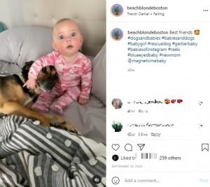 ベストフレンドのメイソンとジョジョちゃん(画像は『Allison Ackerman 2020年9月18日付Instagram「Best friends」』のスクリーンショット)