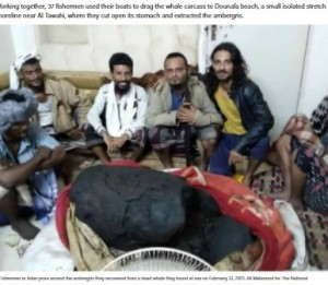 【海外発!Breaking News】イエメンの漁師、クジラの死骸から約1億6500万円の「龍涎香」発見で生活が一変<動画あり>