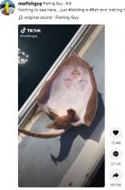 エイの腹部をくすぐると笑う? TikTokのトレンドに「これは虐待」と非難の声(米)<動画あり>