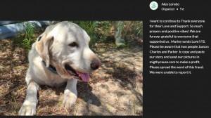 【海外発!Breaking News】襲い掛かるガラガラヘビに立ち向かった犬、自らは生死をさまようも飼い主を救う(米)